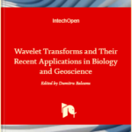 2-D Discrete Wavelet Transform for Hand Palm Texture Biometric Identification and Verification